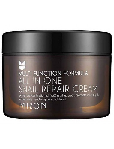 Crema Regenerante Mizon All In One Snail Repair Cream 120 ml